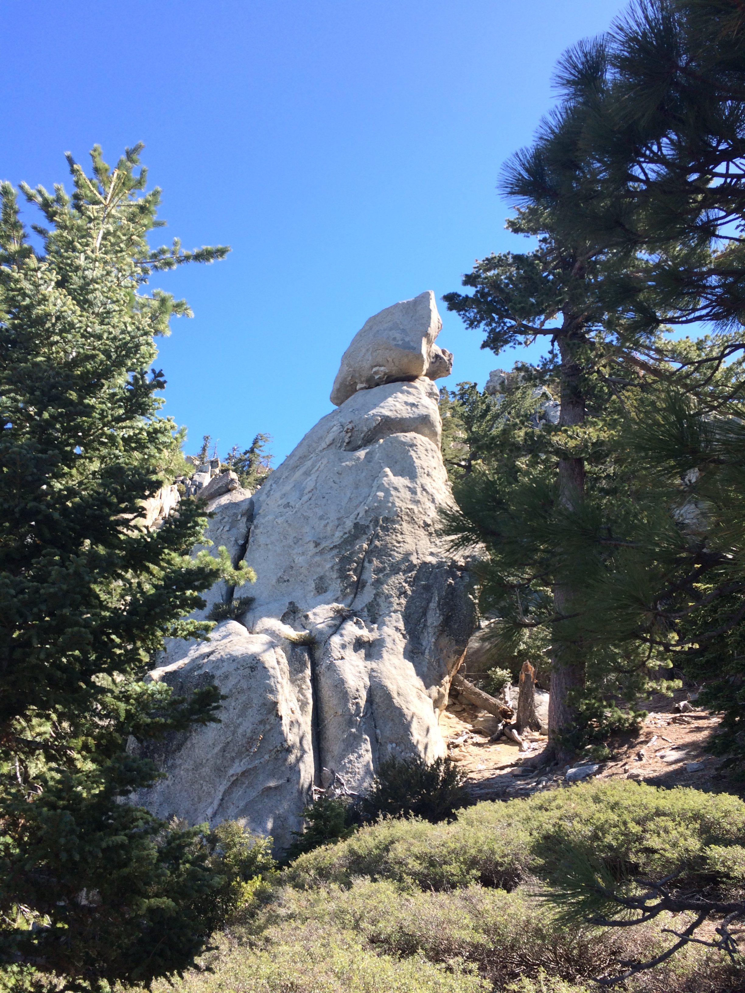 """Doggie Rock"" on South Ridge Trail"